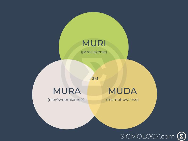 model-3m-muda-mura-muri